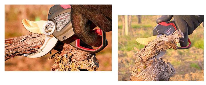 Precios de las tijeras cortasetos para poda de arboles frutales y ramas